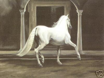 whitehorsewesternhardware